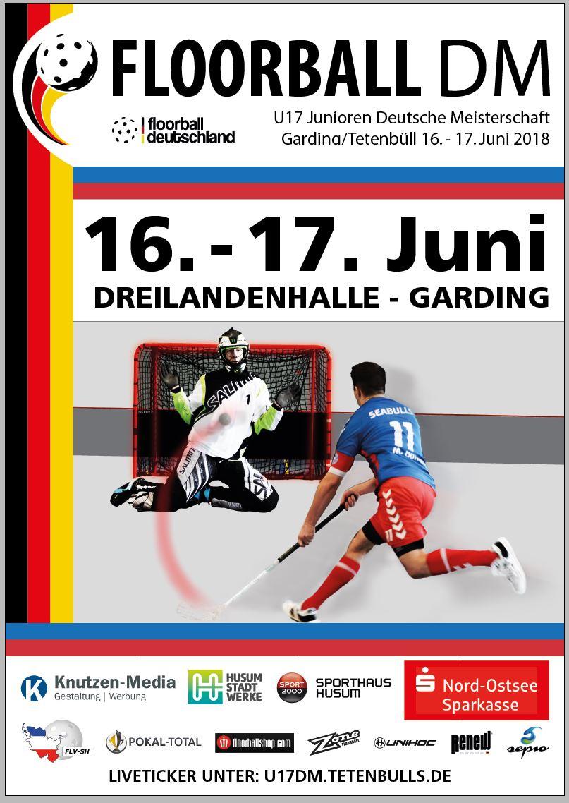 Bild: Plakat U17 Deutsche Meisterschaft Floorball